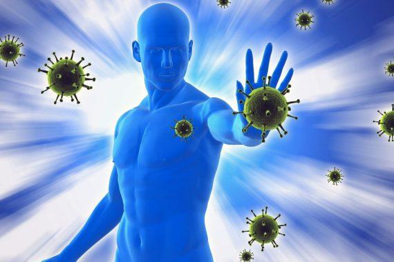 Improve Your Immune System